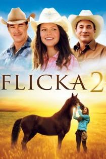 Flika 2