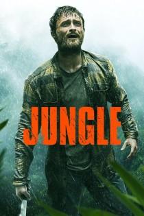 Džungļi