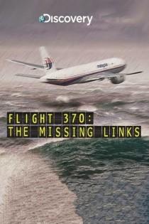 Reiss MH370