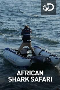 Āfrikas haizivju safari