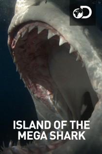 Island Of The Mega Shark
