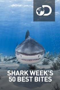 Shark Week's 50 Best Bites