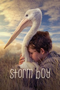 Vētras puika